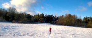 мама лыжи